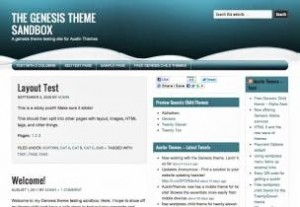Theme WordPress AlphaAero Free Download